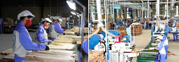 Công ty cổ phần Woodlands Tuyên Quang
