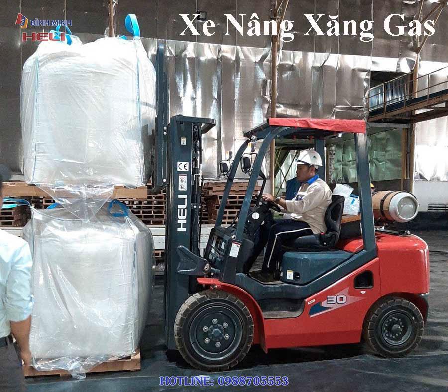Xe Nâng Xăng Gas Tại Đồng Tháp